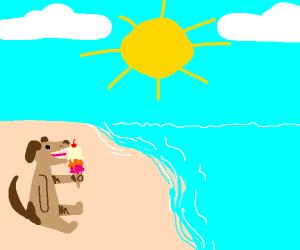 Dog eat three scoup ice cream on beach