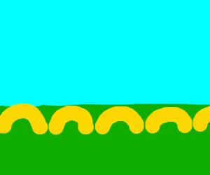 macaroni fence