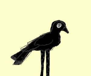 Black bird w/ 1 eye and very long legs