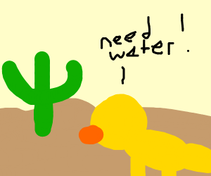 Duck in a desert