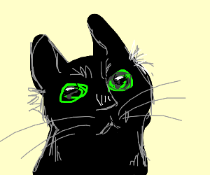 Black cat with green eyes looking up
