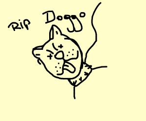 Doggo is deado