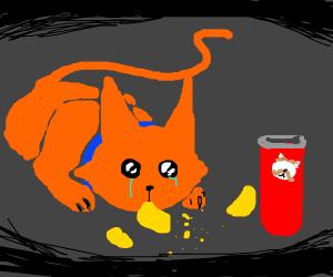 Depressed Cat Eats Pringles