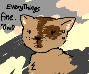 internally distraught cat