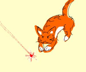 cat vs. red thing