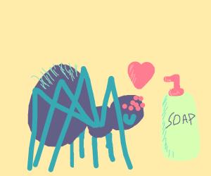 Spider loves soap