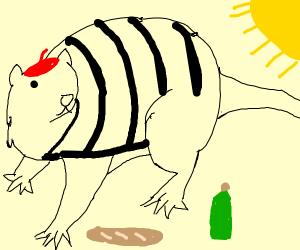 french rat basking in sunlight