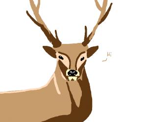 confident deer can talk