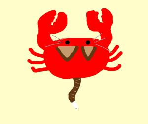 Cat Crab