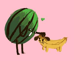 Melon Man Pets Banana Dog