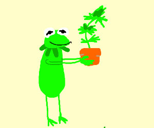 Kermit holds a plant