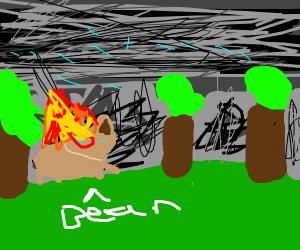 Bear on fire in rain