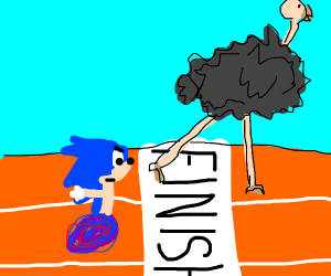 ostrich beat sonic in a race