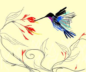 Hummingbird in a flower
