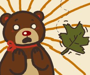 bear shocked by leaf