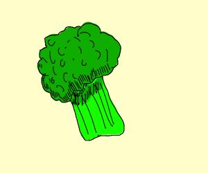 Green broccoli parcel