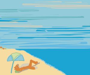 Fox on the Beach