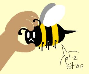 Squeeze Bee