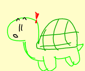 A turtle
