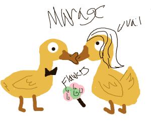 A duckling wedding!