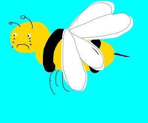 Sad bee is bummed