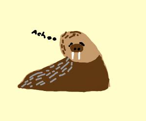 walrus sneeze