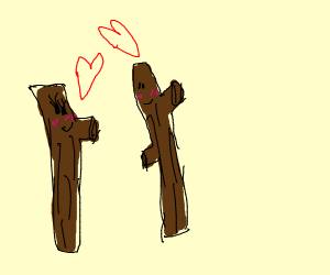 A twig couple seem happy with each other