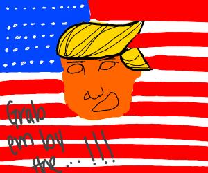 america is a joke