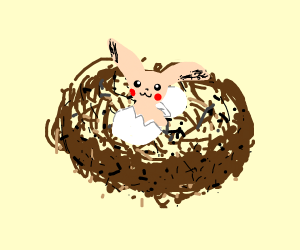 Hairless pikachu hatched out of a bird nest