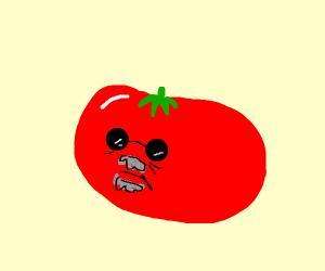 Old tomato