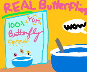 breakfast bowl with butterfly cereal