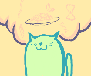 cat thinks about noodles