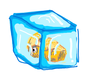 Guy frozen in a block of ice