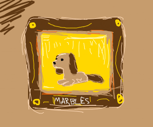 fancy framed portrait of dog called marbles