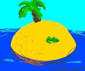 Lizard is a castaway on desert island