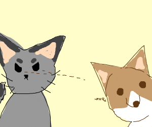 catto is angery at doggo