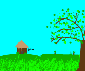 A wood house in a field.