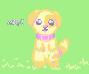 dog with pink collor standing