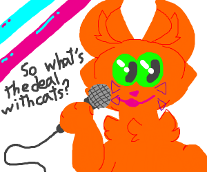 """comedian cat saying """"whats the deal with cats"""