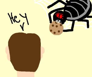 Man watching a black widow eat his cookie
