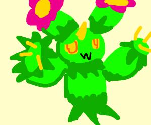 Maractus