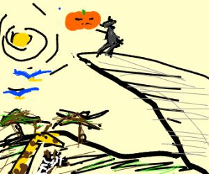 aww savinya shababdeeooobada pumpkin