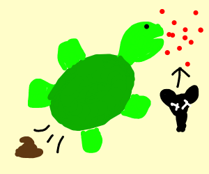 turtle that is pooping and eating rat poisen