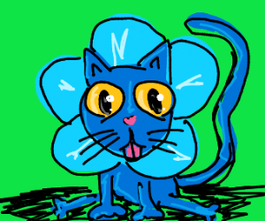 Blue flower-cat