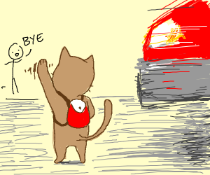 cat about to be hit by a car, guy says bye