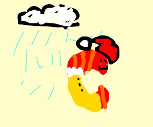 Shrimp wearing a Coat