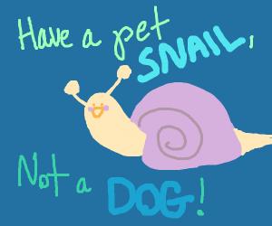 have a pet snail, not a dog