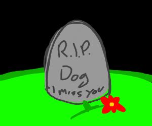 RIP Dog