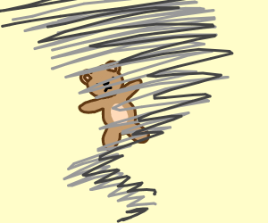 Teddy bear in a hurricane