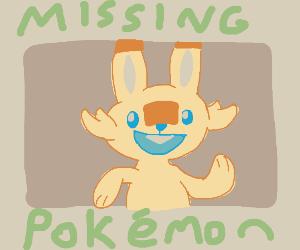 "sign ""Missing"" Scorbunny(pokemon)"